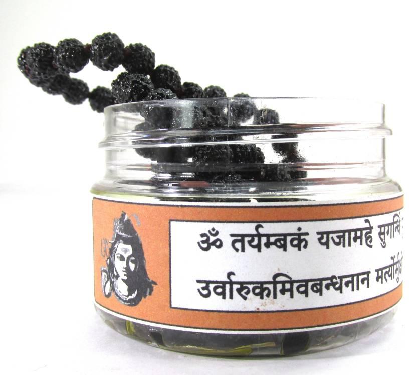 SHIVOHAM Black Rurdraksha Mantra Siddha Mala 108+1 Beads