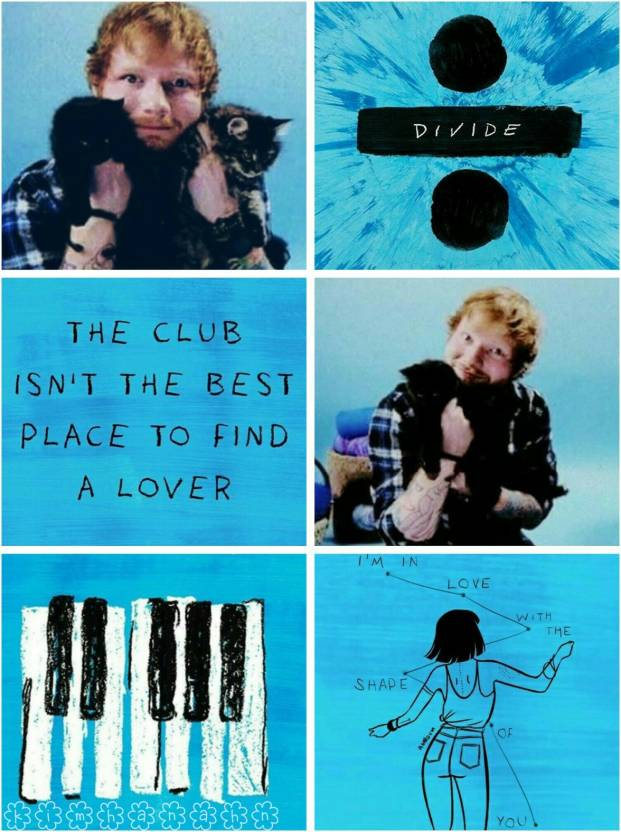 Ed Sheeran Divide Poster (Size 12 Inch x 18 Inch) (Pack of 1