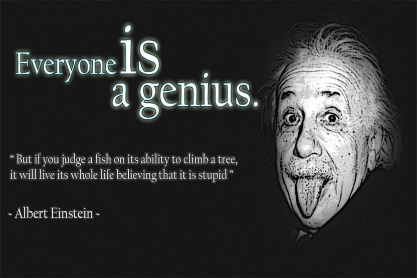 Asd Albert Einstein Education Quotes Wall Poster 1319 Inches Matte