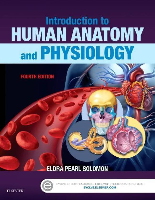Introduction to Human Anatomy and Physiology - Buy Introduction to ...