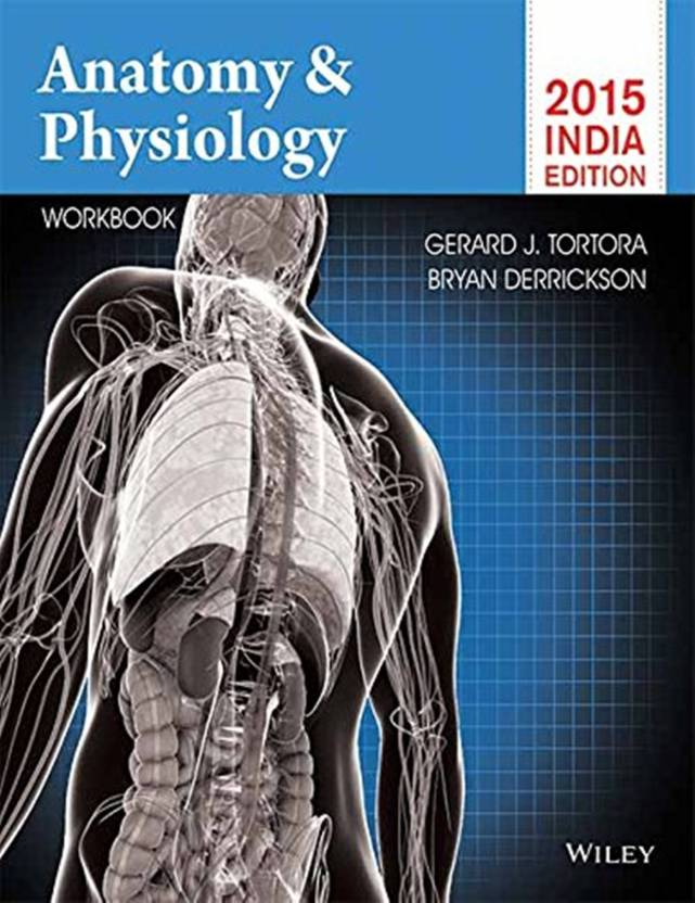 Anatomy Physiology With Workbook Buy Anatomy Physiology With