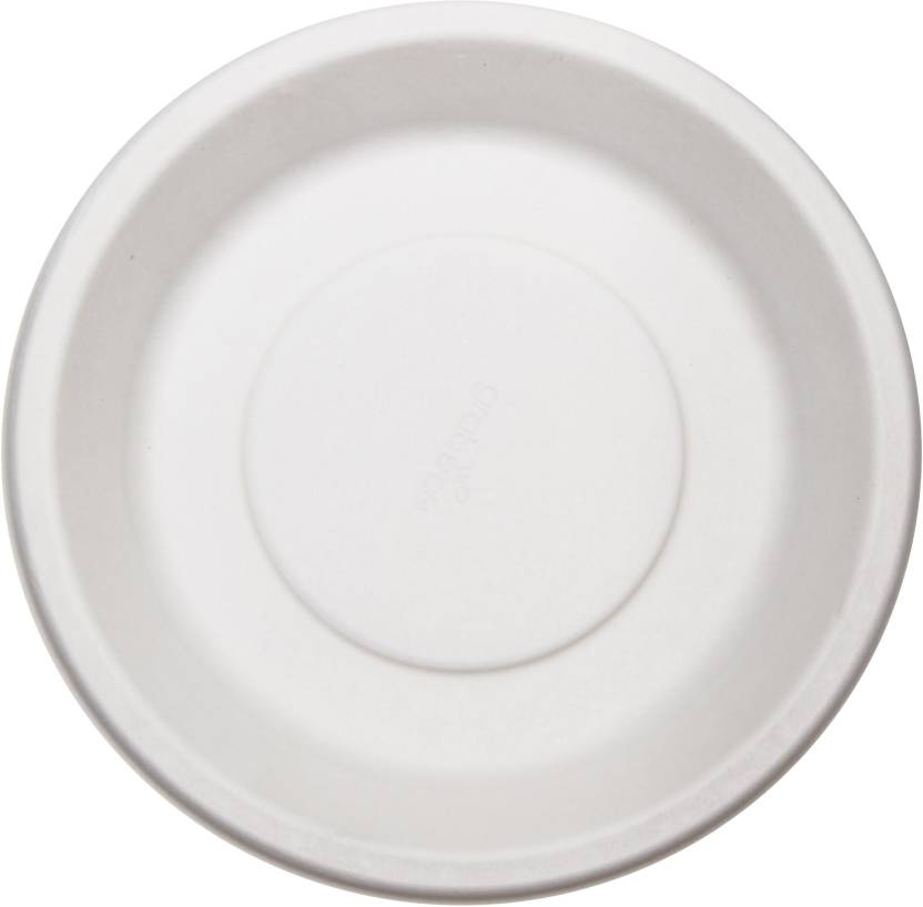 1fb1e888b3f Grabeco TWI-Grabeco Biodegradable Disposable Pulp Party Plate Round 10 inch  Plate (Pack of 10)