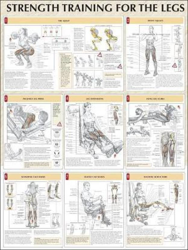 Legs Poster (Strength Training Anatomy) (Strength Training Anatomy ...
