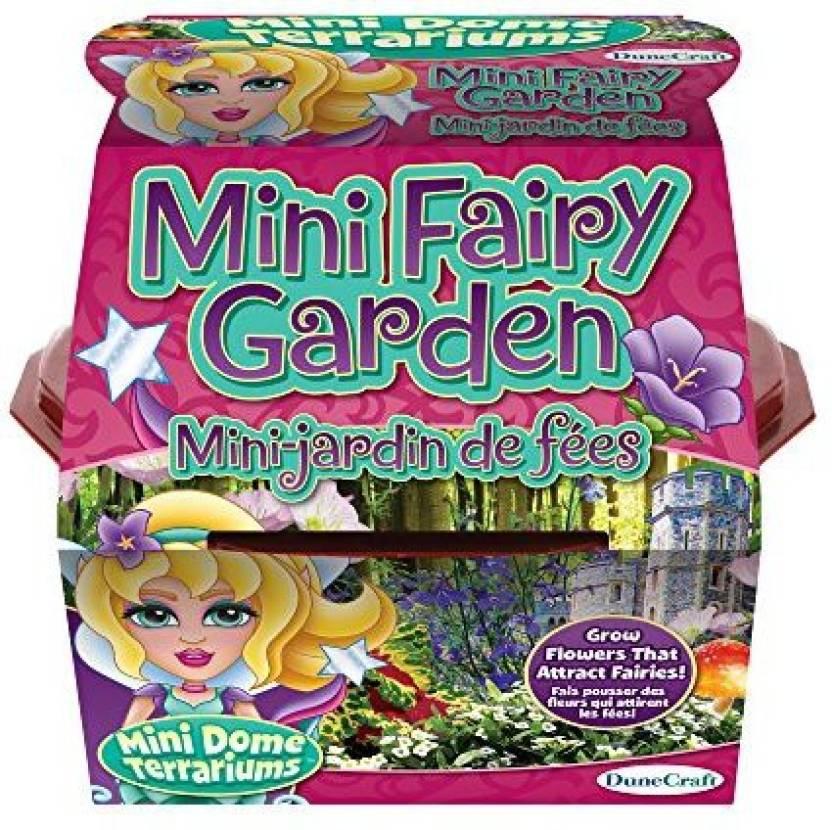 Dunecraft Mini Fairy Garden Mini Dome Terrarium Price In India Buy