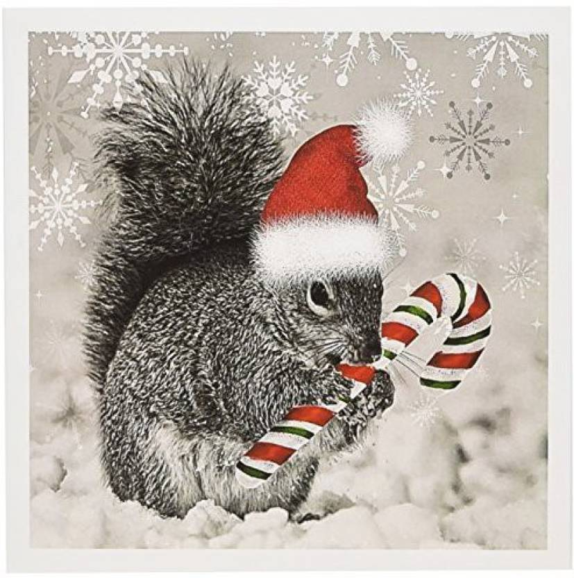 d820bfa76d7 3dRose Christmas squirrel has candy cane and Santa hat in snow - Greeting  Card
