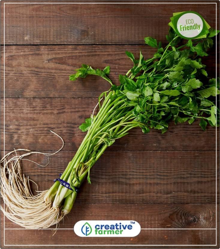 Celery App