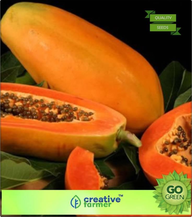 Creative Farmer Papaya Taiwan Long Juicy Fruit Seeds Fruit