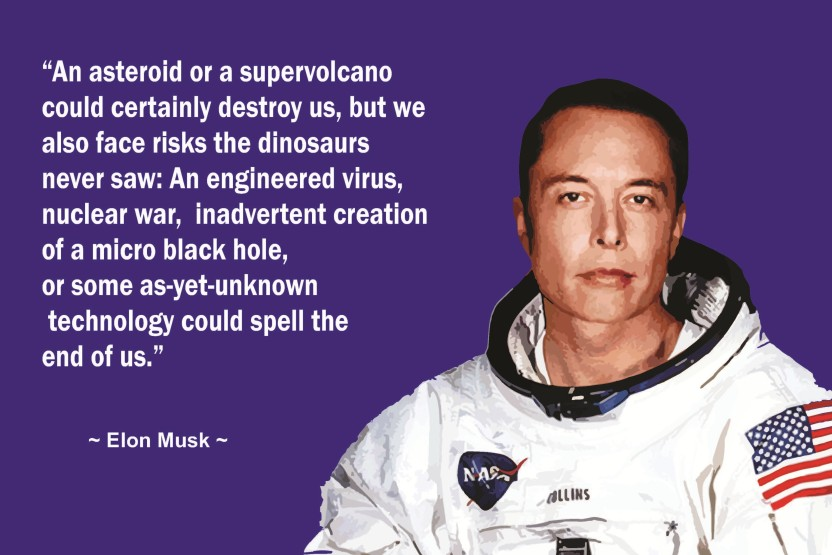elon musk motivational quotes inspirational wall poster