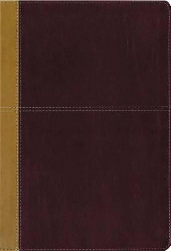 KJV, Amplified, Parallel Bible, Large Print, Leathersoft