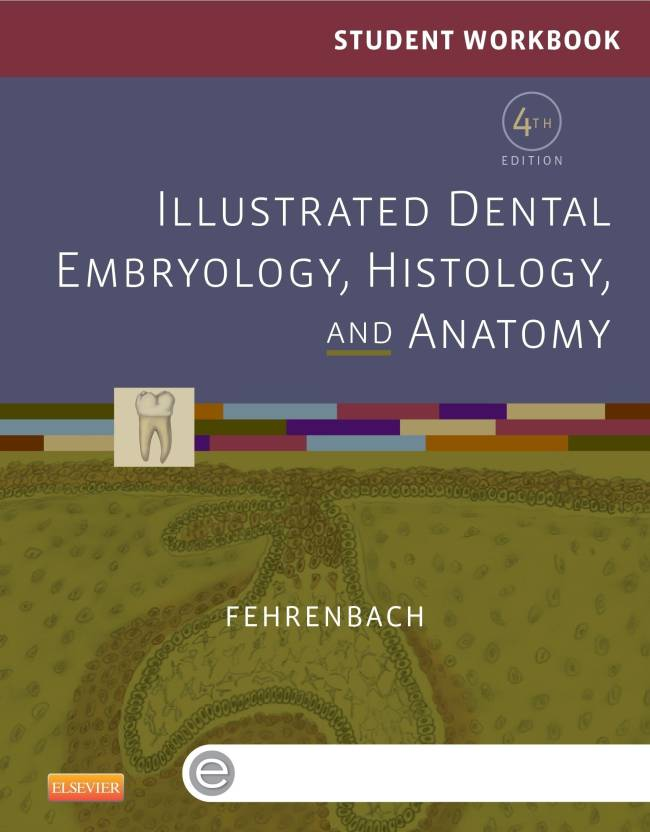 Student Workbook For Illustrated Dental Embryology Histology And