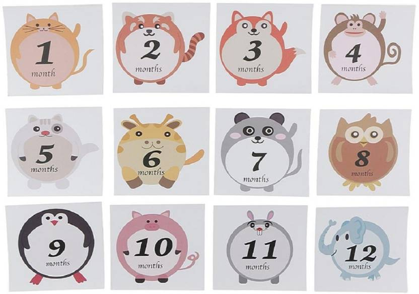 Ziory Medium Monthly Milestone Stickers For 1 Year Baby Sticker