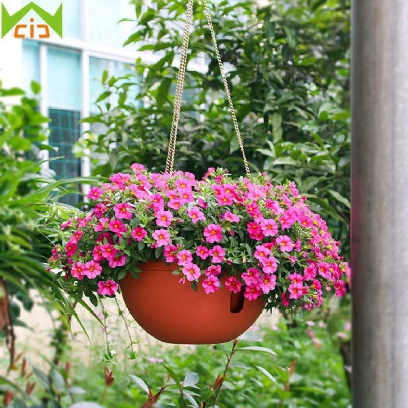 Flipkart & Airex Hanging Planter Flower Pot Plant Container Set Price ...