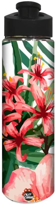 Nutcase Hibiscus Leaves 800 Ml Bottle Buy Nutcase Hibiscus Leaves
