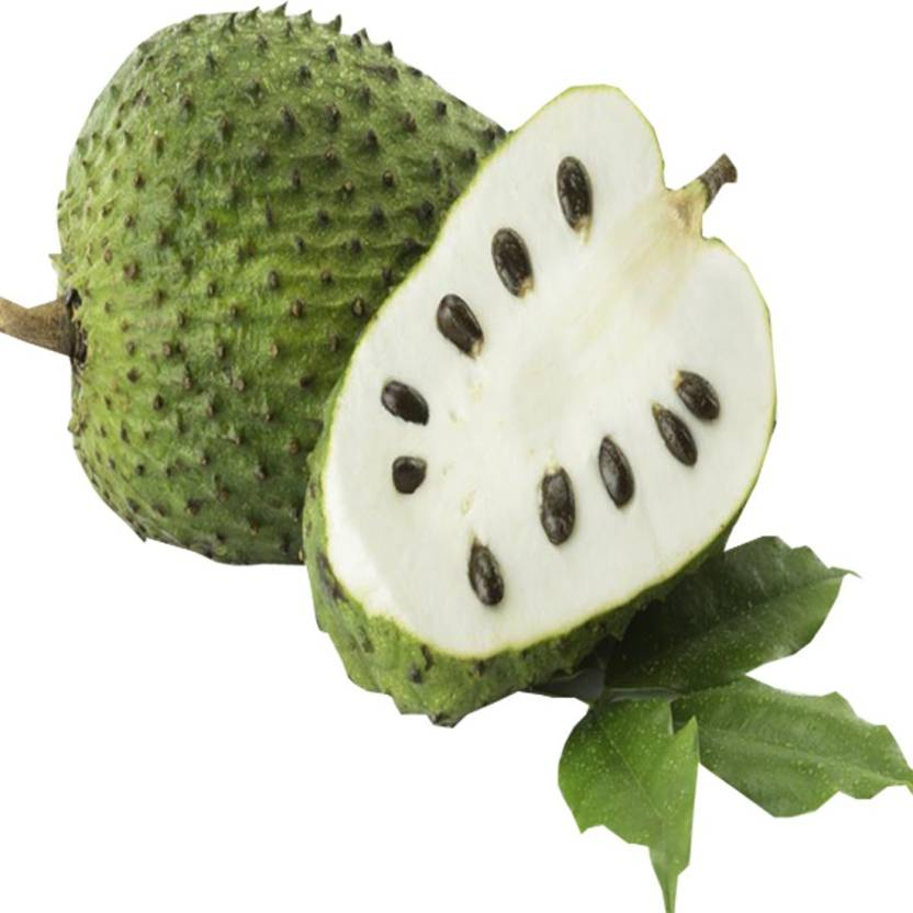 Graviola Soursop Fruit Images