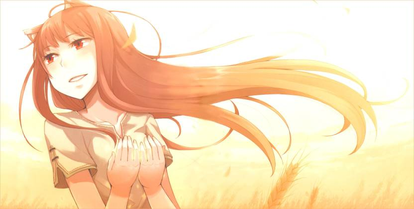 Athah Anime Spice And Wolf 1319 Inches Wall Poster Matte Finish
