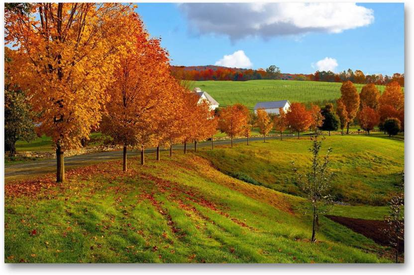 Wall Poster Autumn Season Nature Hd Quality Wall Poster