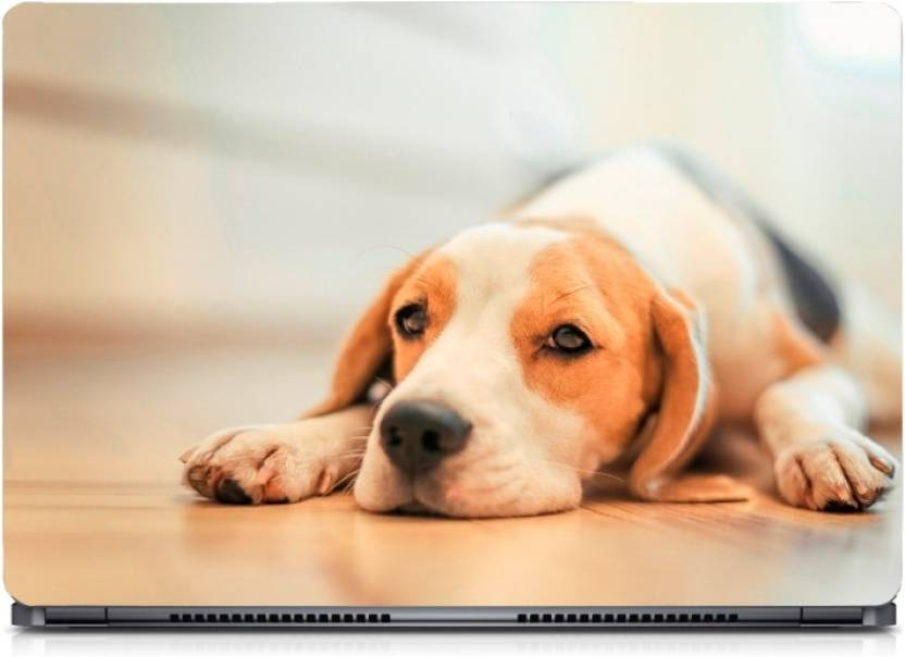 I Birds Beagle Dog On Floor Exclusive High Quality Laptop Decal