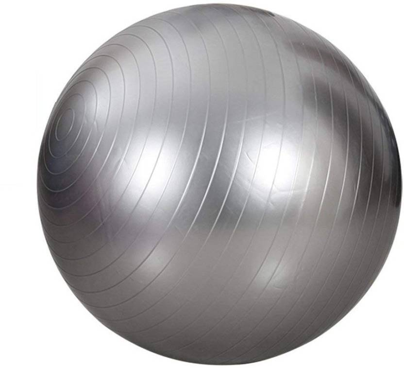 GOCART 65CM Yoga Ball Gym Fitness Equipment Exercise Balls Gym Ball