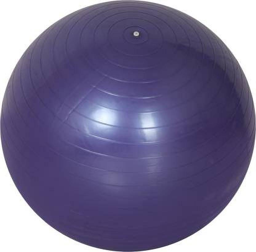 Web Mall Anti Burst 85 cm Gym Fitness Aerobics Yoga Exercise/Ball Gym Ball With Pump