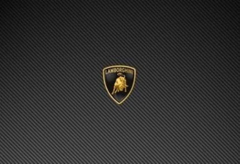 Wow Lamborghini Logo Black Vinyl Laptop Decal 15 6 Price In India
