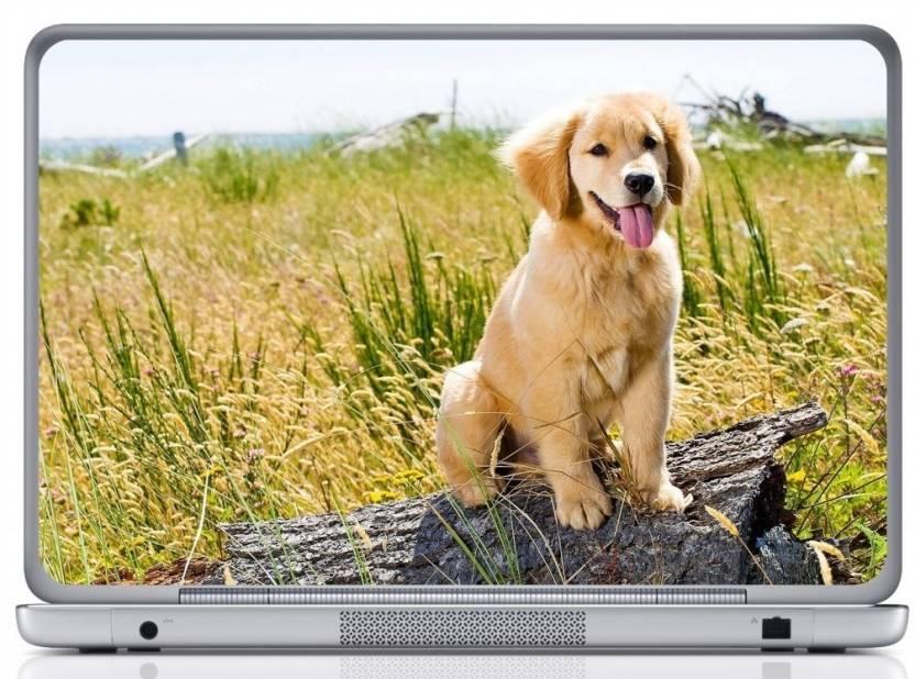 Wall Design Golden Retriever Puppy Vinyl Laptop Decal 15 6 Price In