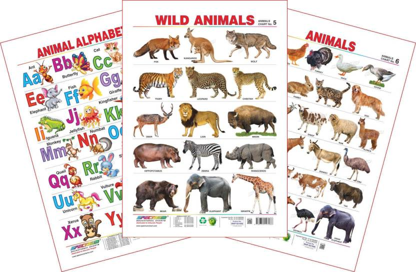 Spectrum Set of 3 Educational Wall Charts (Animal Alphabets