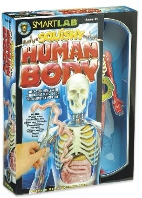 Smartlab Squishy Human Body Price in India - Buy Smartlab Squishy ...