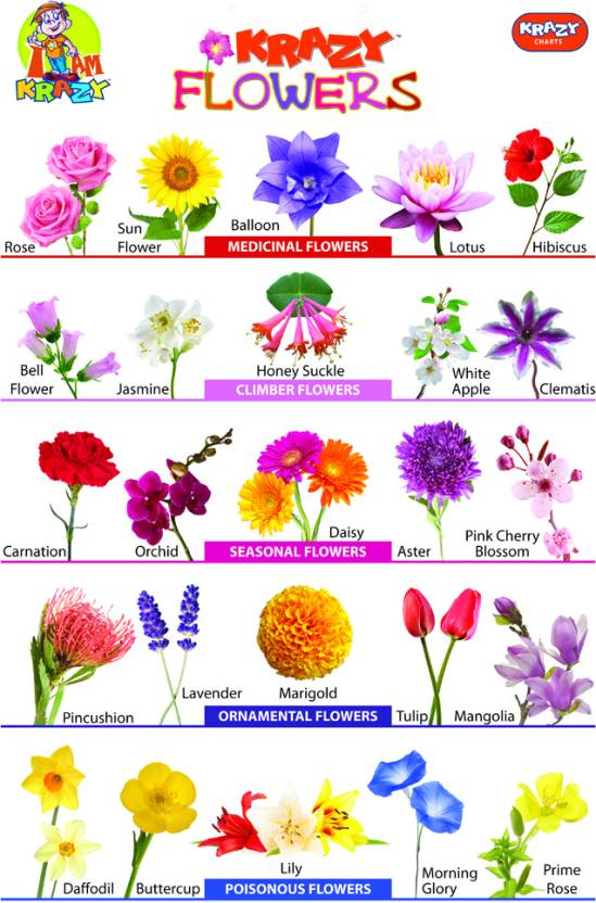 Indian Flowers Name List