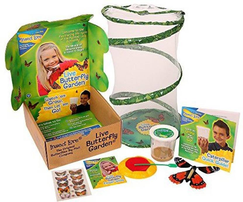 insect lore butterfly garden gift set with live cup of caterpillars - Live Butterfly Garden