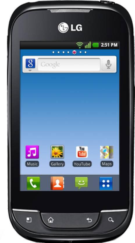 LG Optimus Dual Sim P698 (Titanium, 160 MB)