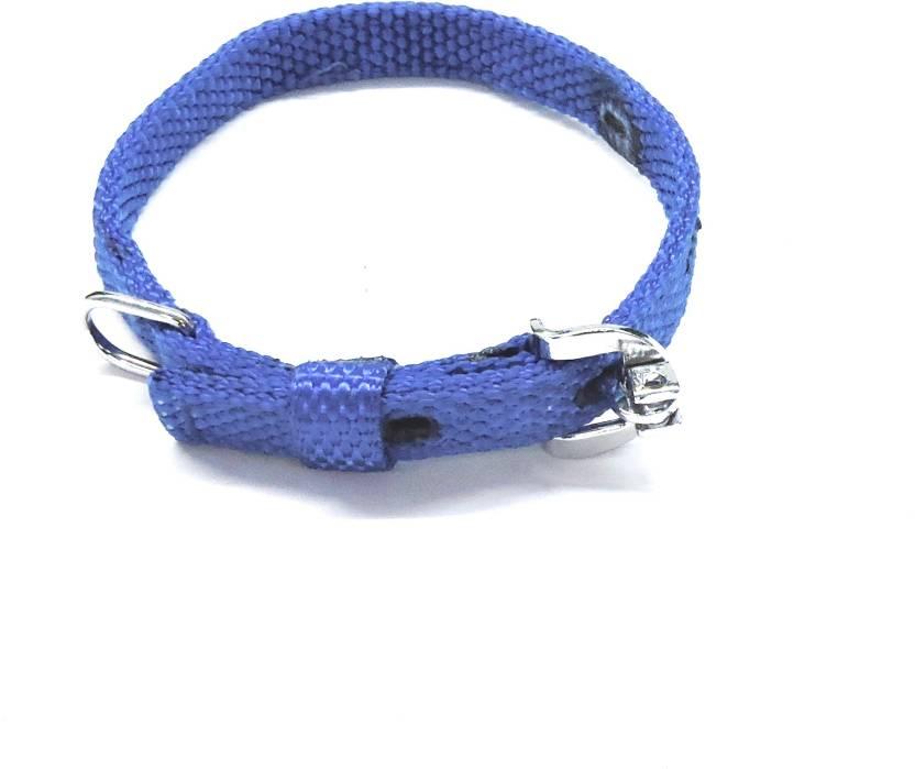 Kennel Nylon Collar Blue - Small Dog Martingale Collar Price