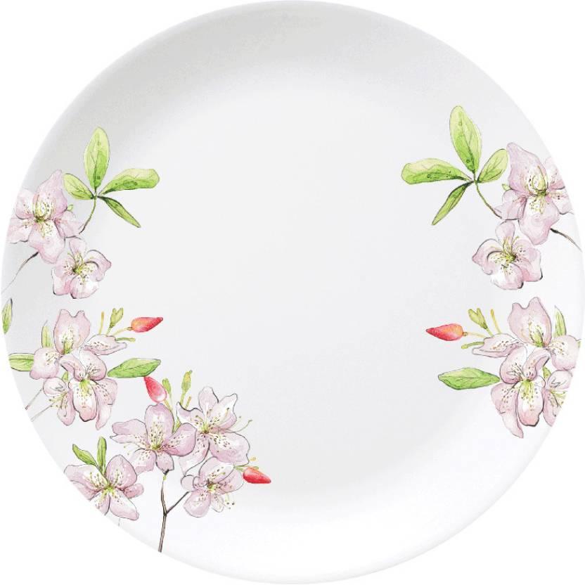 Terrific Servewell Urmi Buffet Paradise Plate Set Price In India Download Free Architecture Designs Saprecsunscenecom
