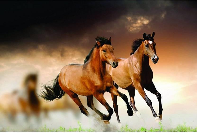 Original Quotes Decorative Horse Riding Poster Size Paper Print