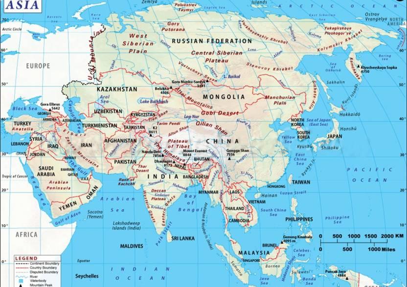 world political map 101 fine art print