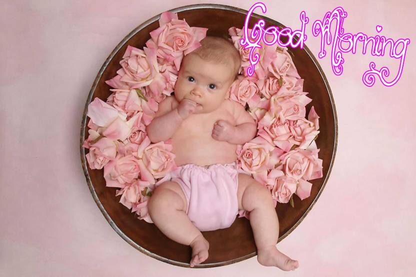 Pink Rose Baby Poster With Good Morning Design Upfk511903 Paper