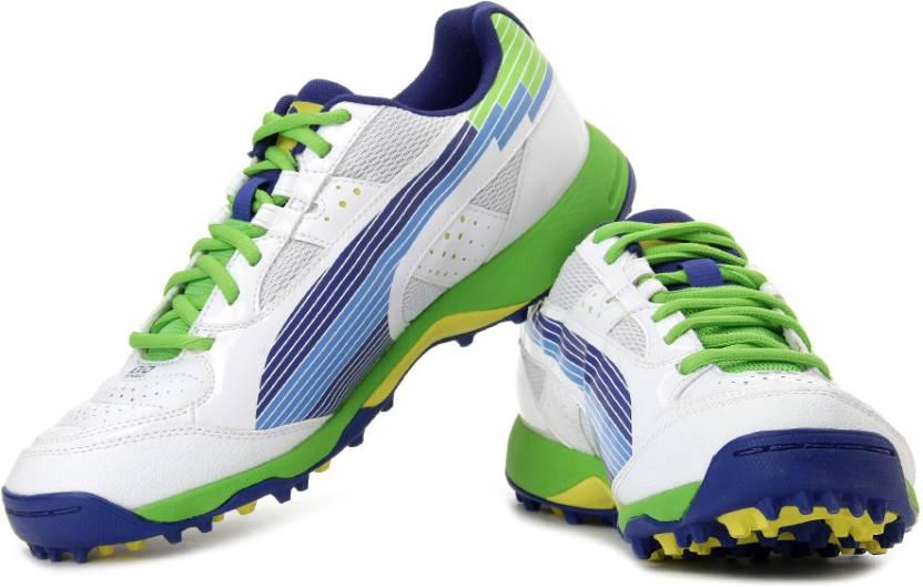 cd96994eb07f Puma EvoSPEED Cricket Rubber Cricket Shoes For Men - Buy White ...