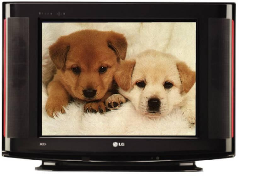 LG (14) CRT TV