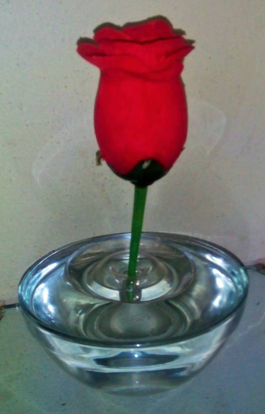 Slait Floating Flower Glass Vase Price In India Buy Slait Floating