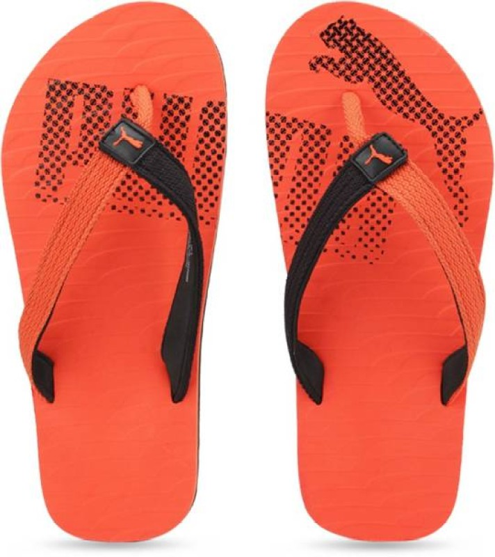 Adidas, Levis... - Mens Sandals & Slippers - footwear